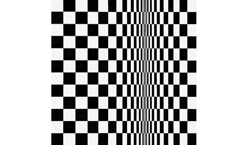 movement in squares by english artist bridget riley