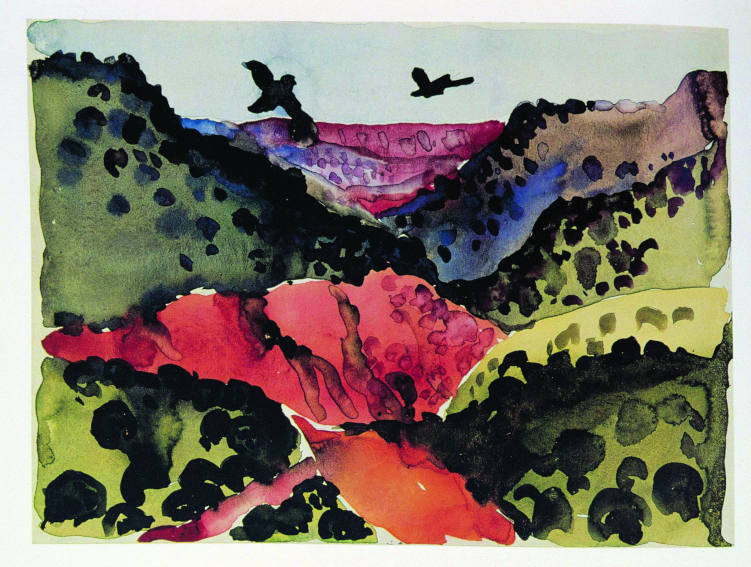 Georgia O Keeffe Canyon With Crows drawing