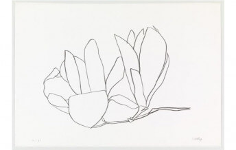 Abstraction And Nature In Ellsworth Kelly Paintings Buy